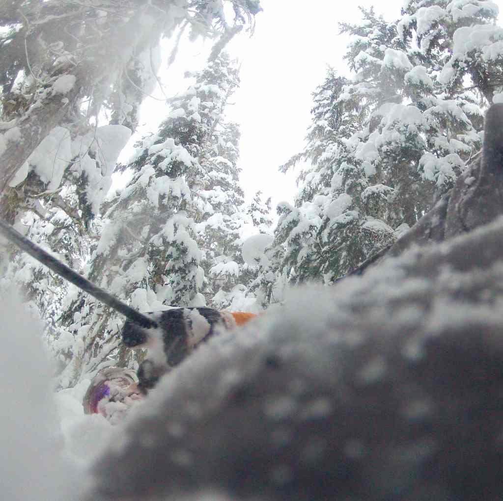 camaras-de-accion-esquiando_6