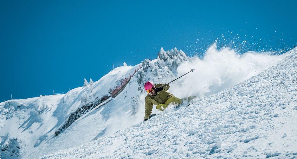Esquís gama media 2020