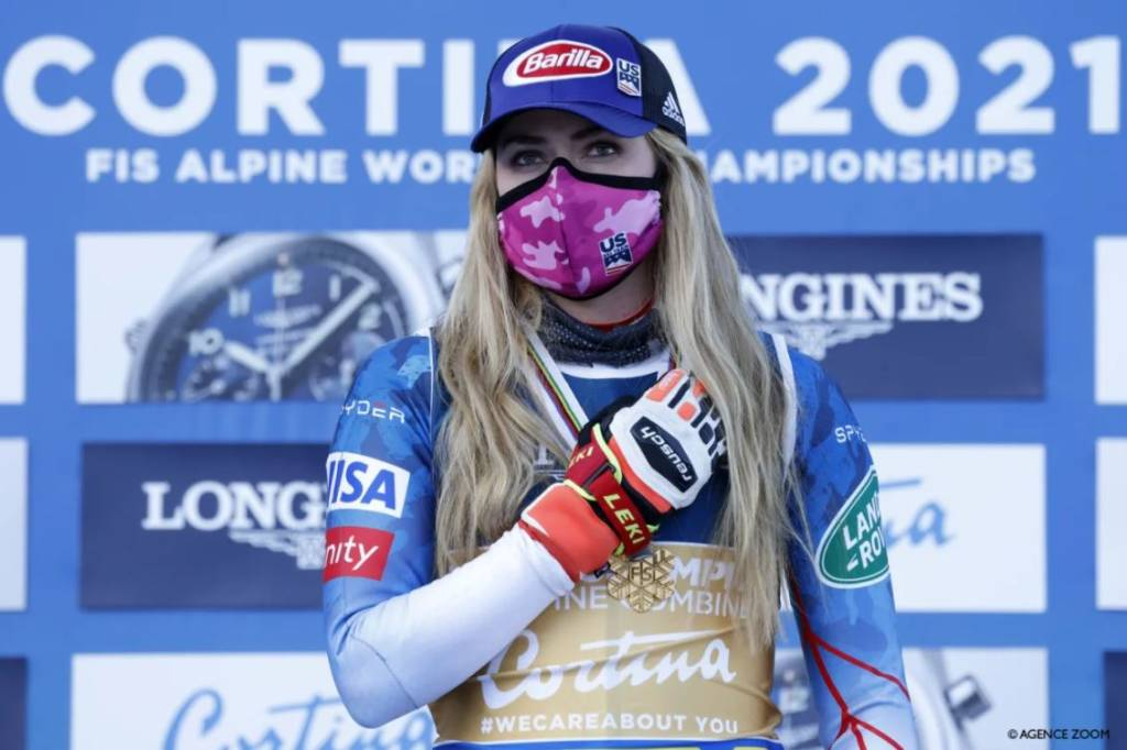 AC-Shiffrin-Cortina-2021