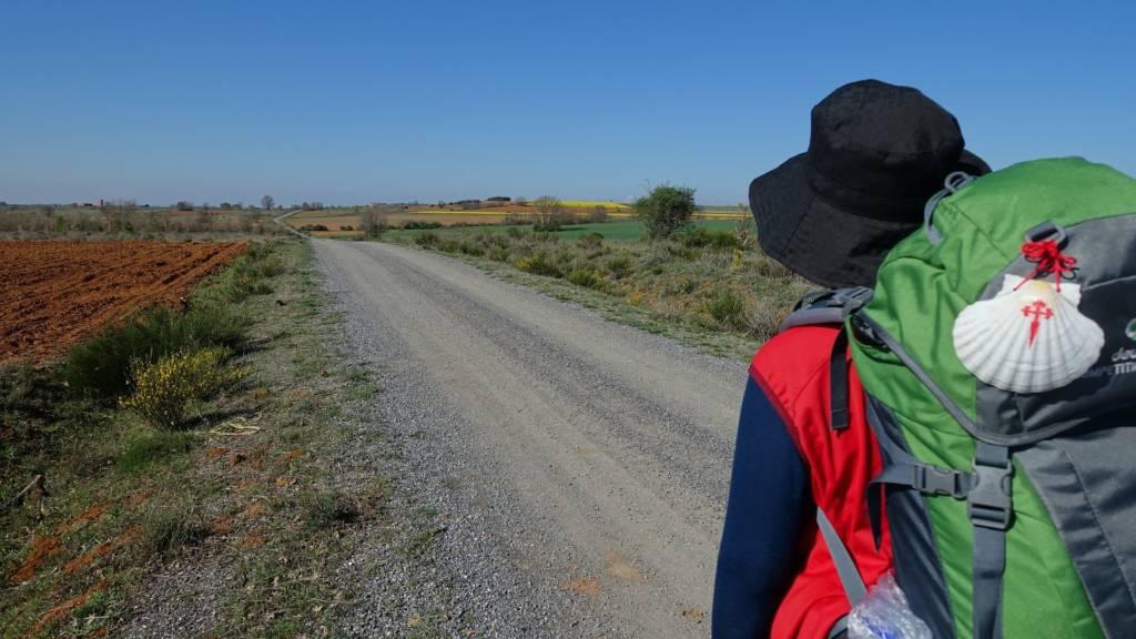 Camino de Santiago Arán-Pirineos