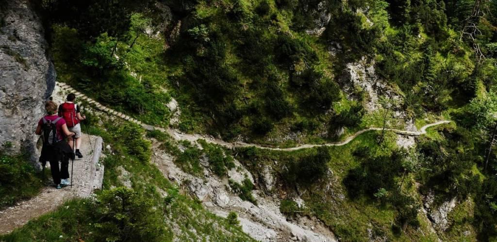 Sendero bajando - Robert Allmann